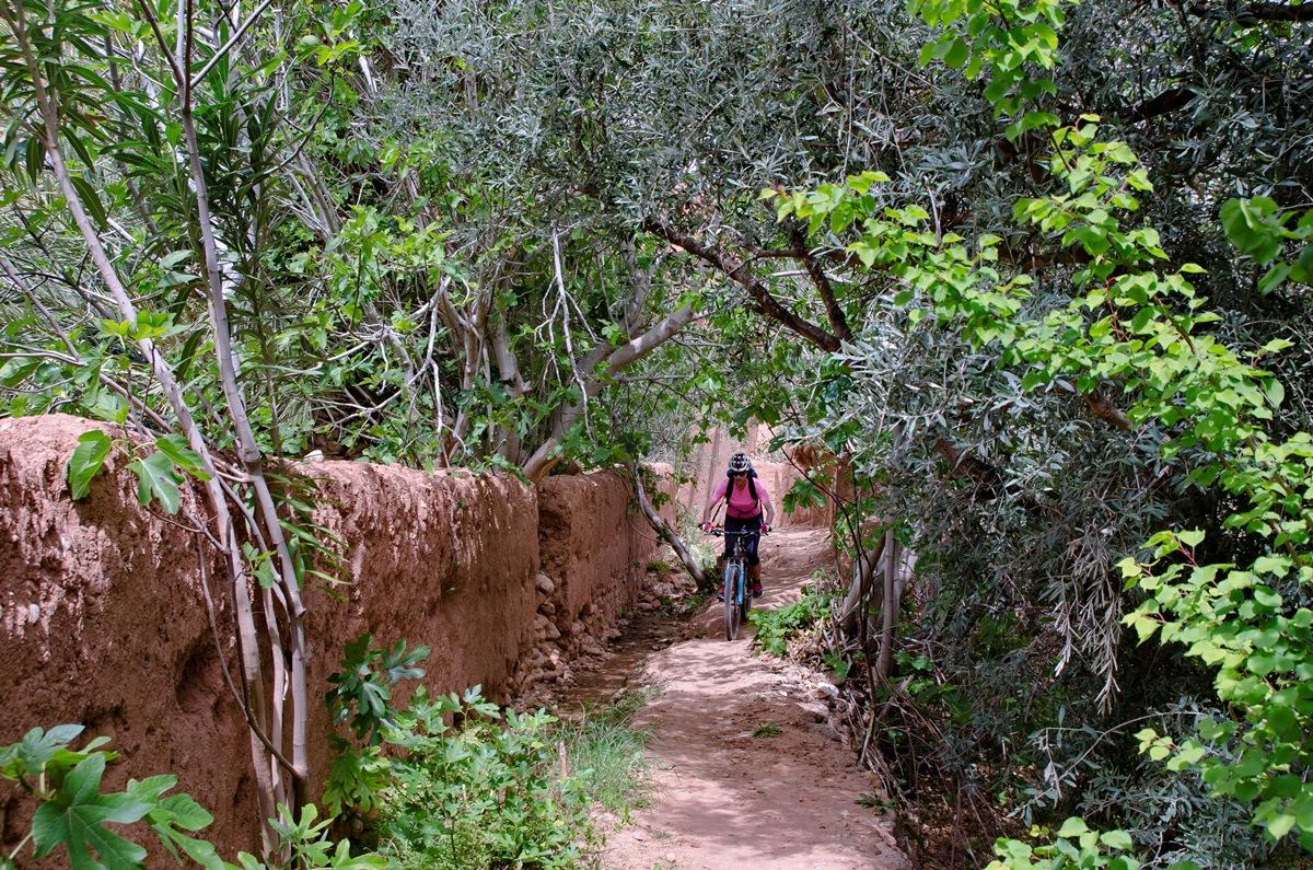 13_Maroko_DSC_6372