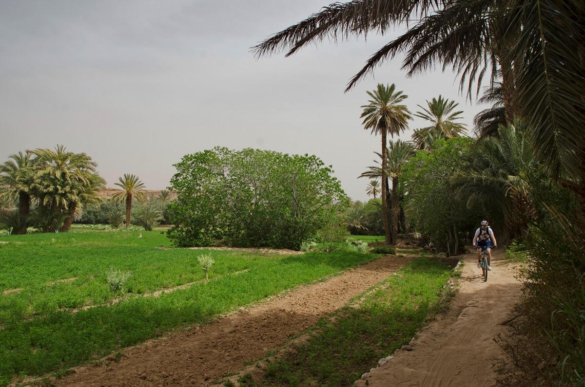 14_Maroko_DSC_6381