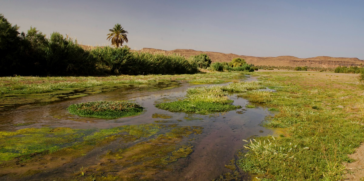 Maroko_DSC_7012
