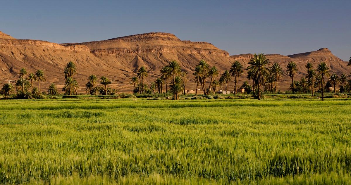 Maroko_DSC_7046
