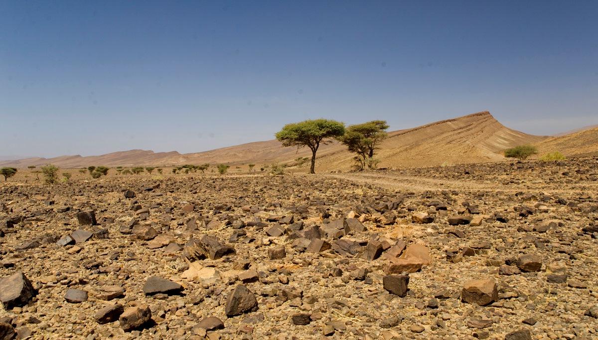 Maroko_DSC_7128
