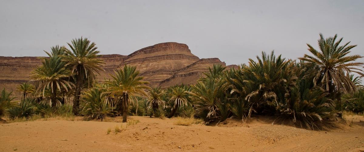 Maroko_DSC_7514