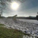 V zahajajoe sonce    wintersun wintersunset kozolec igljubljanahellip