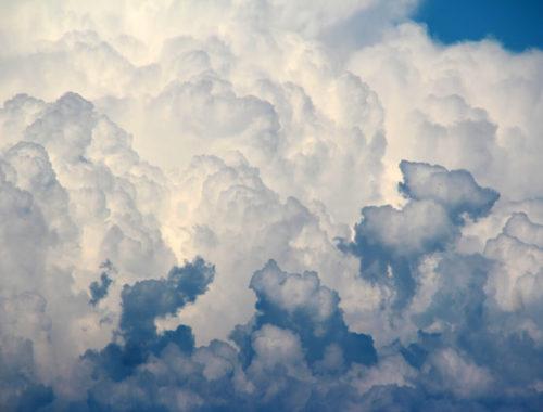 Solidarnost v oblakih