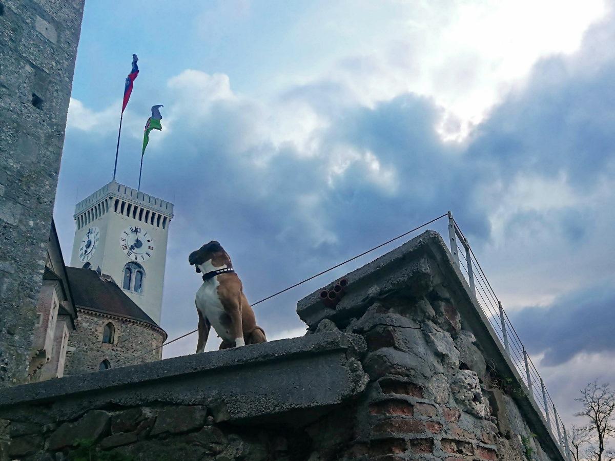 Pippa na gradu