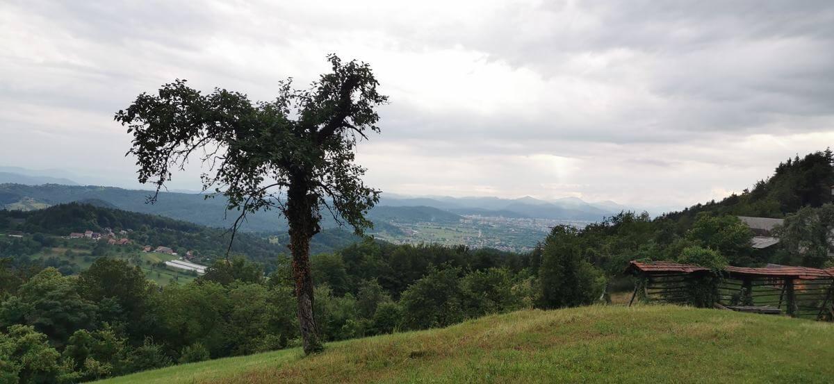 Pogled proti Ljubljani