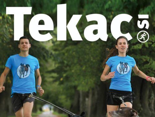 Tekac.si 10/11-2019